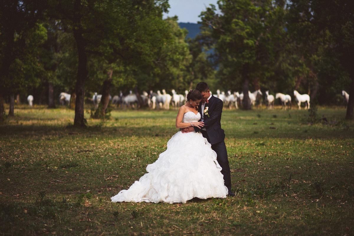 poroka_lipica_primorska_goriška_brda_poročni_fotograf_098