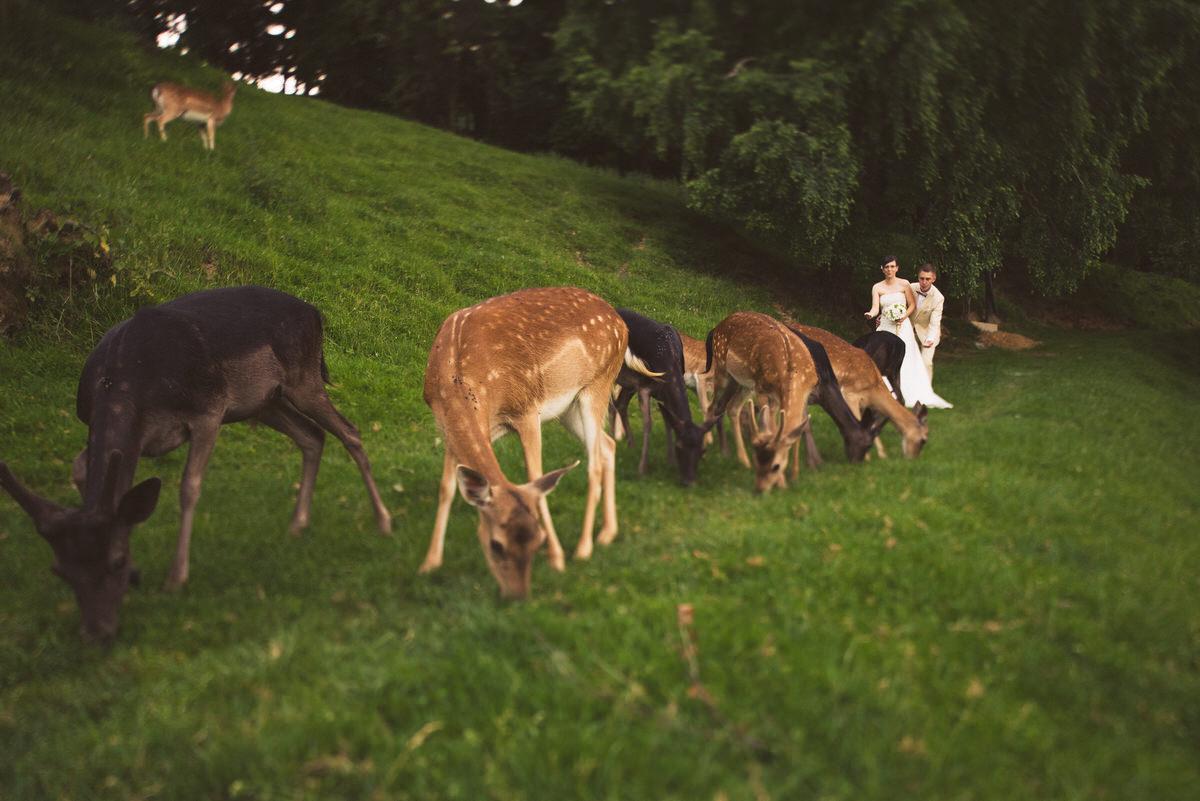 poročni_fotograf_poroka_olimje_podčetrtek_štajerska_111