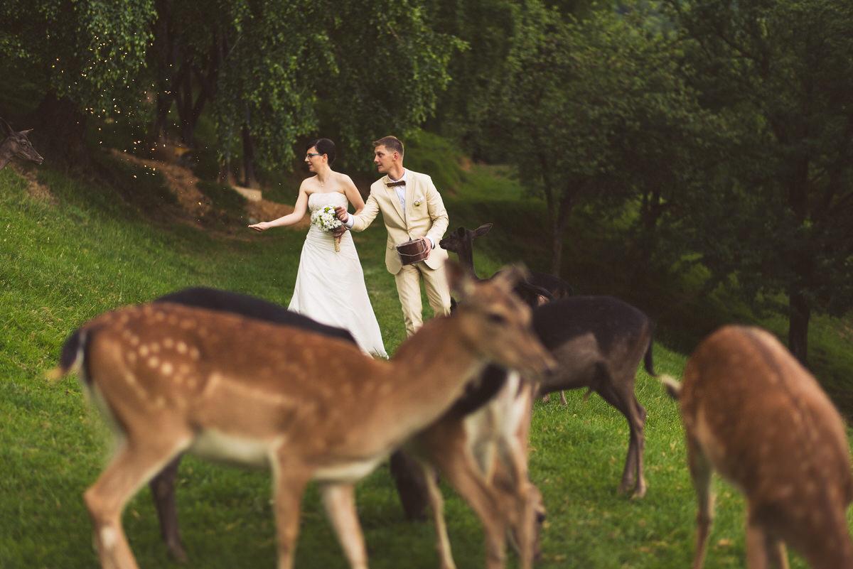 poročni_fotograf_poroka_olimje_podčetrtek_štajerska_113