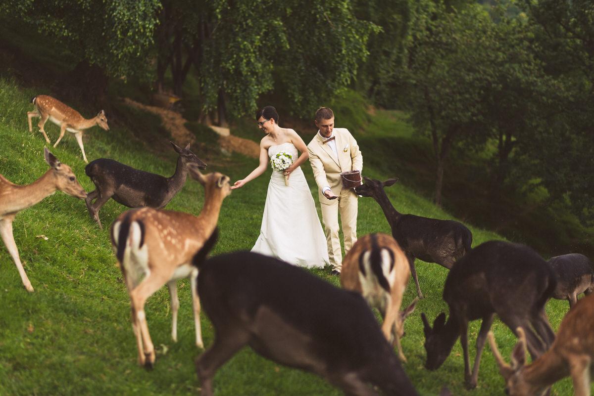 poročni_fotograf_poroka_olimje_podčetrtek_štajerska_115