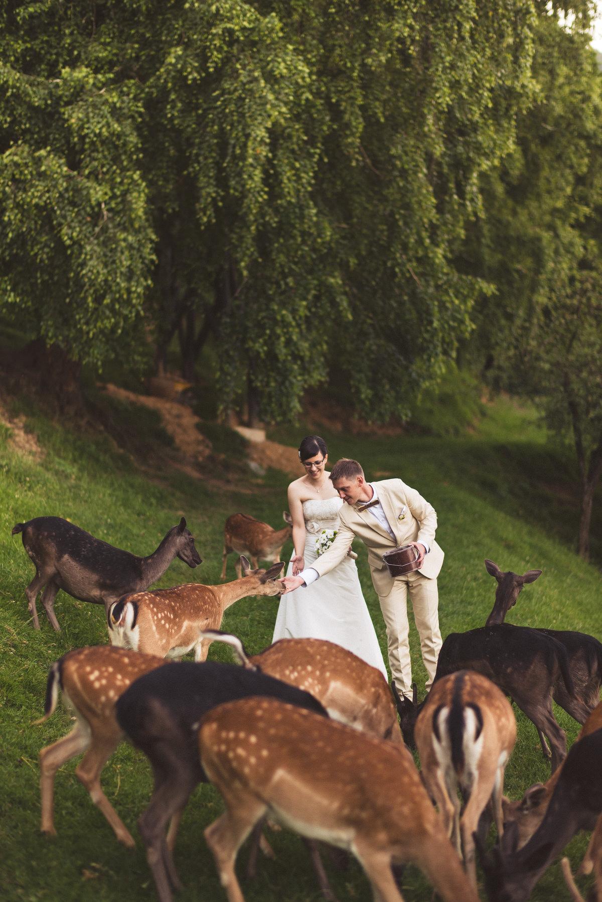 poročni_fotograf_poroka_olimje_podčetrtek_štajerska_116