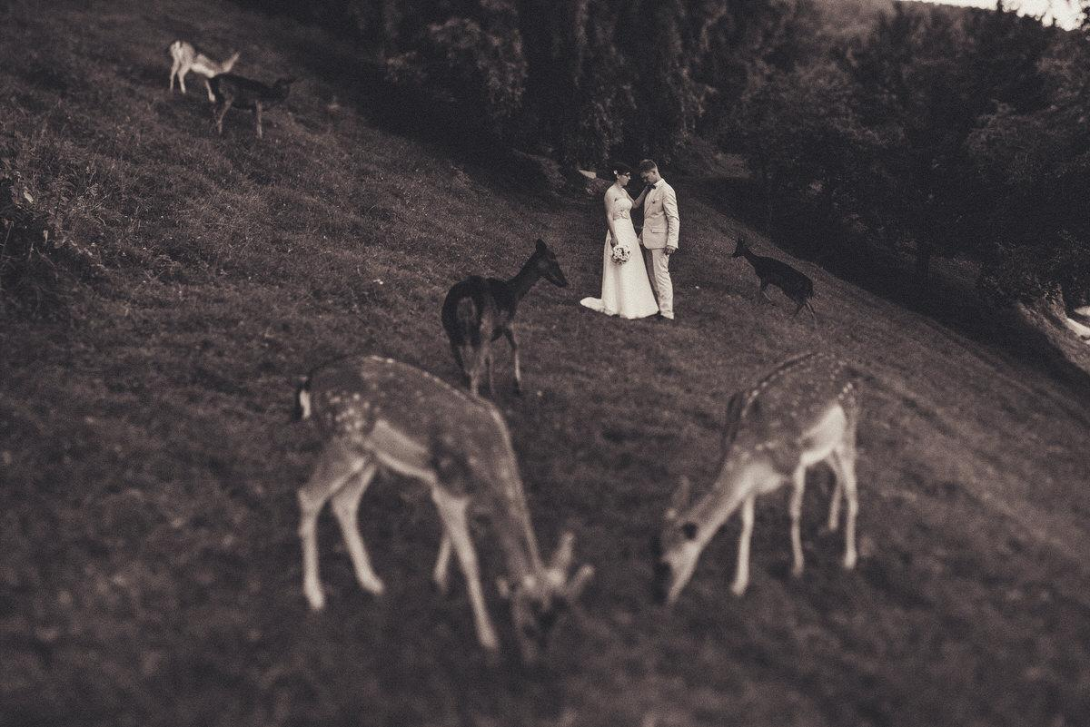 poročni_fotograf_poroka_olimje_podčetrtek_štajerska_119