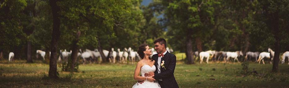 fotografo matrimonio genova 13 - Fotografo Matrimonio Genova