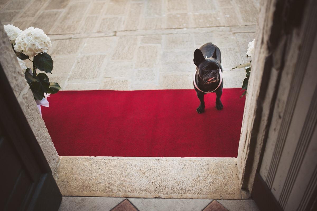 venetian wedding photography venezia matrimonio fotografo 008 - Venetian Wedding