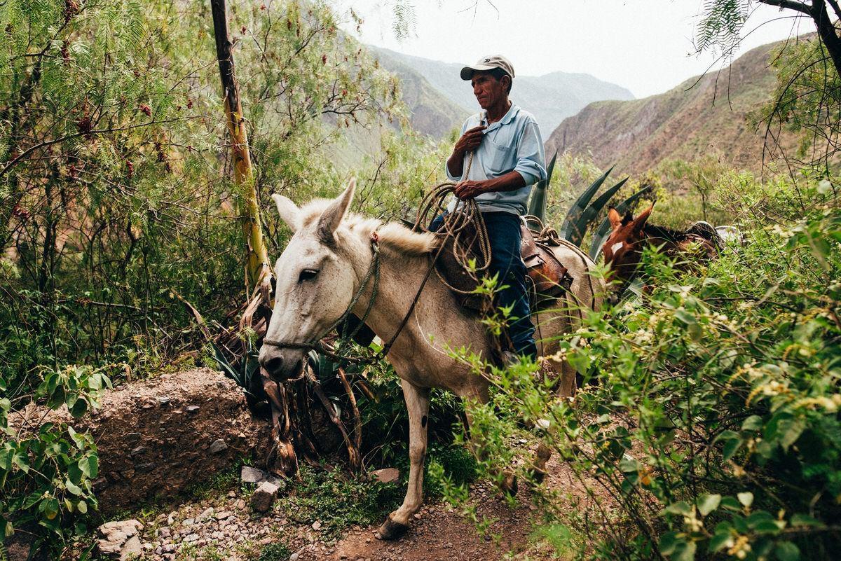 travel photorapher lima lake titicaca paracas colca canyon032 - Peru (2/2)