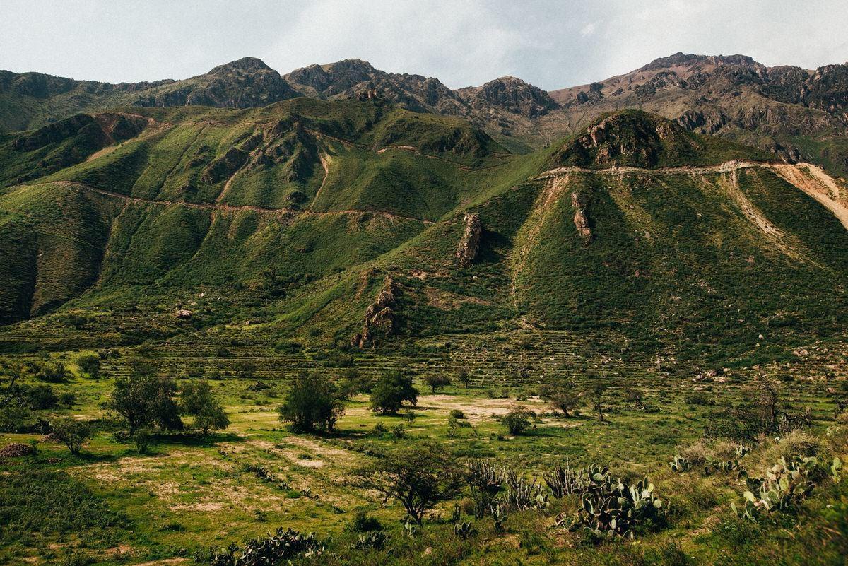 travel photorapher lima lake titicaca paracas colca canyon033 - Peru (2/2)