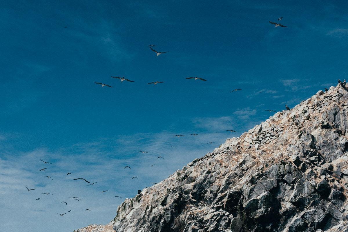 travel photorapher lima lake titicaca paracas colca canyon038 - Peru (2/2)