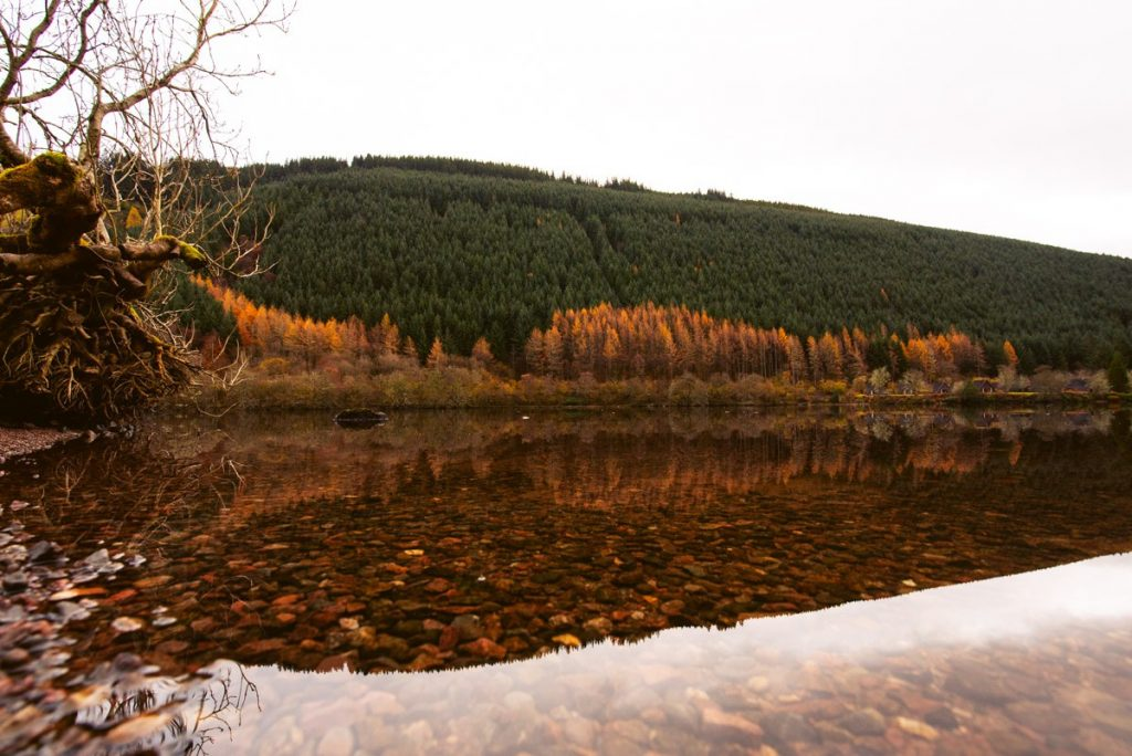 traveling scotland autumn photos 14 1024x684 - Scotland in Autumn