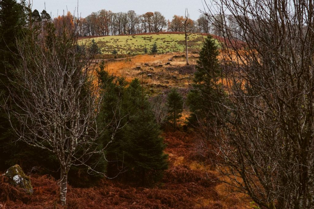 traveling scotland autumn photos 17 1024x684 - Scotland in Autumn