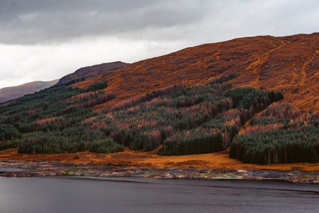 traveling scotland autumn photos 18 1024x684 - Scotland in Autumn