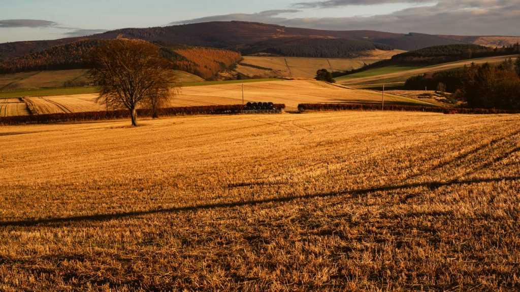 traveling scotland autumn photos 84 1024x576 - Scotland in Autumn
